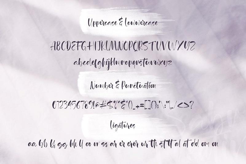 Agathe Ledden Brush Font-3