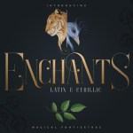 Enchants Magical Serif Font