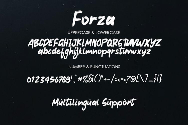 Forza - Brush Typeface-3