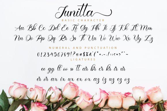 Junitta Calligraphy Font-3