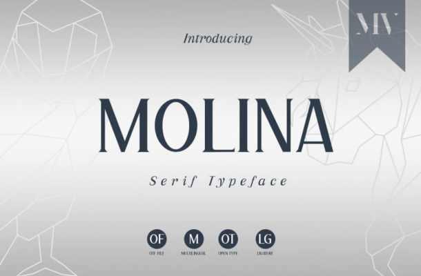 Molina Serif Font
