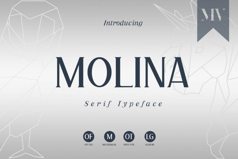 Molina Serif Font-1