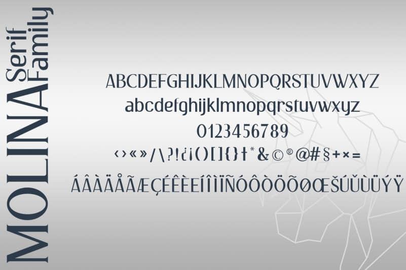 Molina Serif Font-4