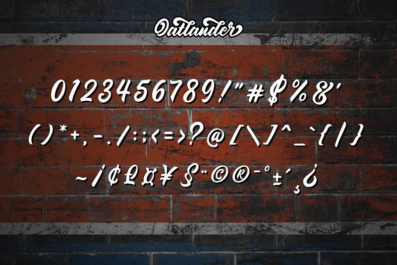 Oatlander Bold Script Font-4