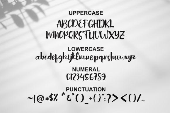 Sottel Bold Calligraphy Font-3