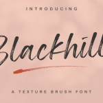 Blackhills Textured Brush Font