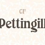 Pettingill Slab Serif Font