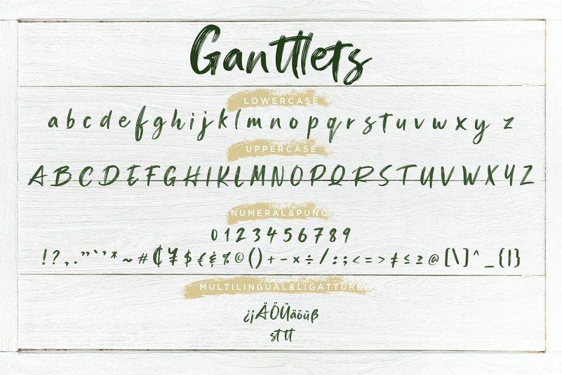 Ganttlets Brush Font-4