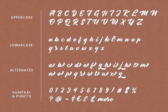 Radens Script Font-3