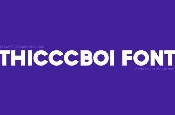 Thicccboi Sans Font Family