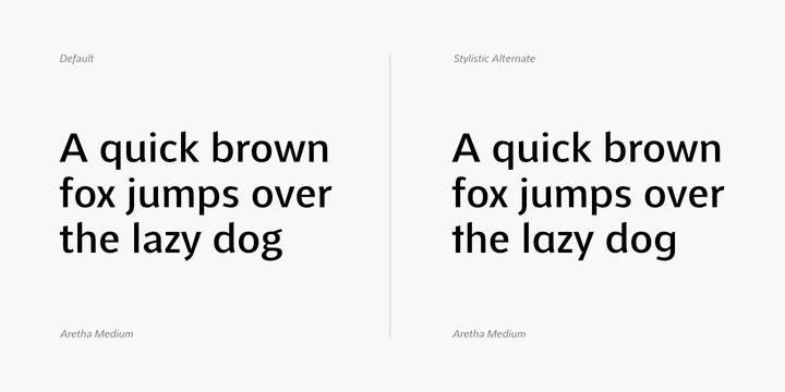 Aretha Sans Serif Font-3