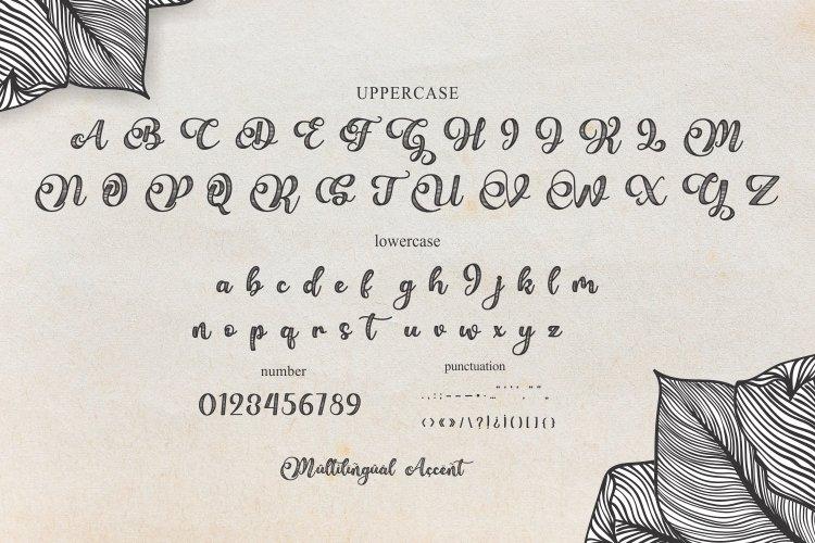 Bellove Modern Calligraphy Font-3