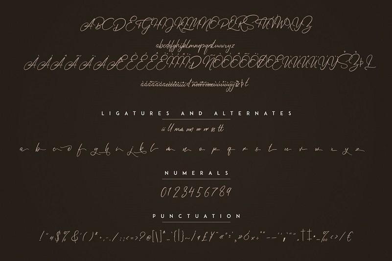 Elysian Handwritten Script Font-3