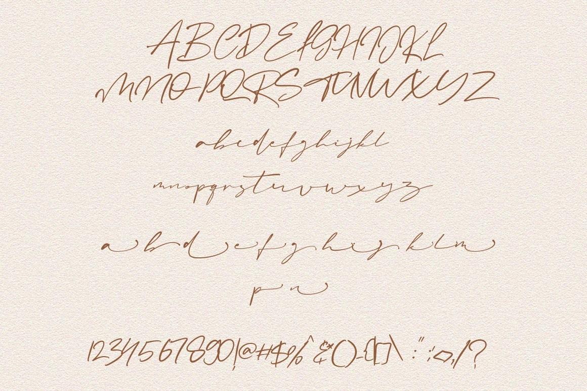 Amanda Signature Script Font-3