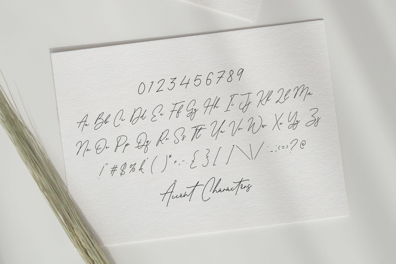 Antonio Fischer Signature Monoline Script Font-3