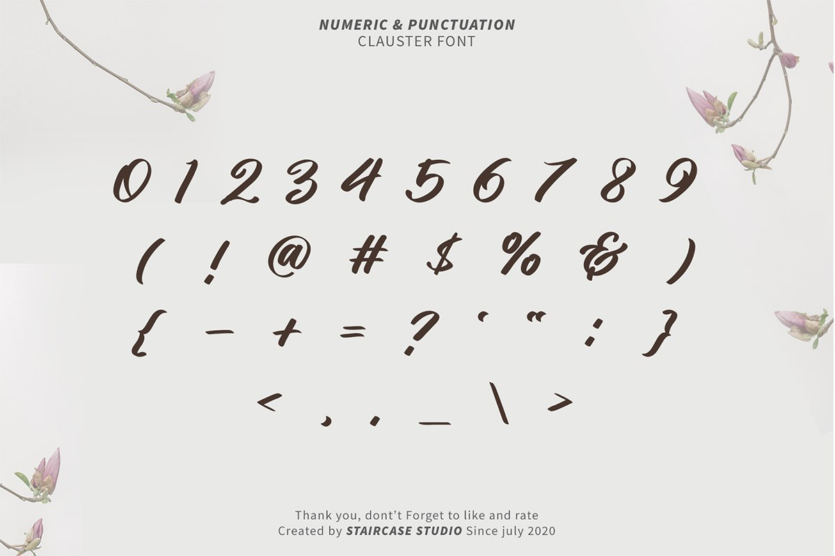 Clauster Script Font-4