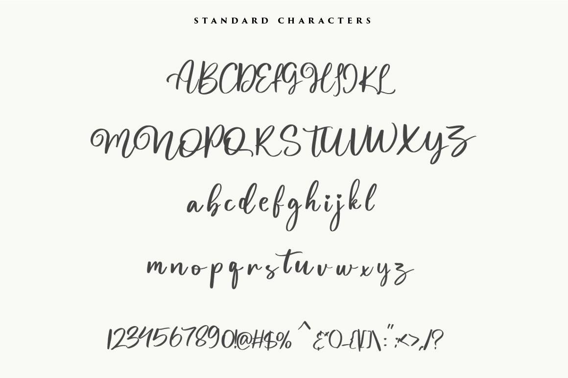 Magnolia Calligraphy Script Font-3