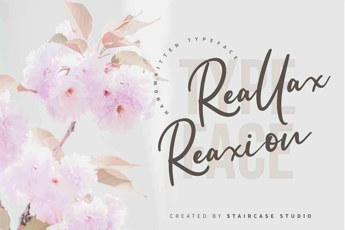Reallax Reaxion Handwritten Font-1