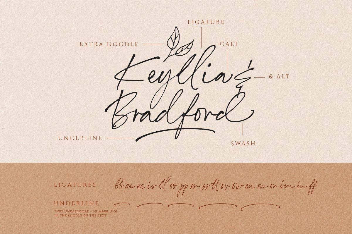 Annette Bradford Ballpoint Signature Script Font-3
