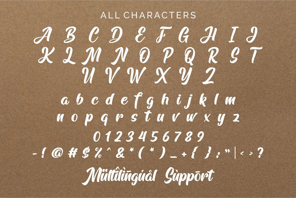 Arfelick Feather Handmade Script Font-4