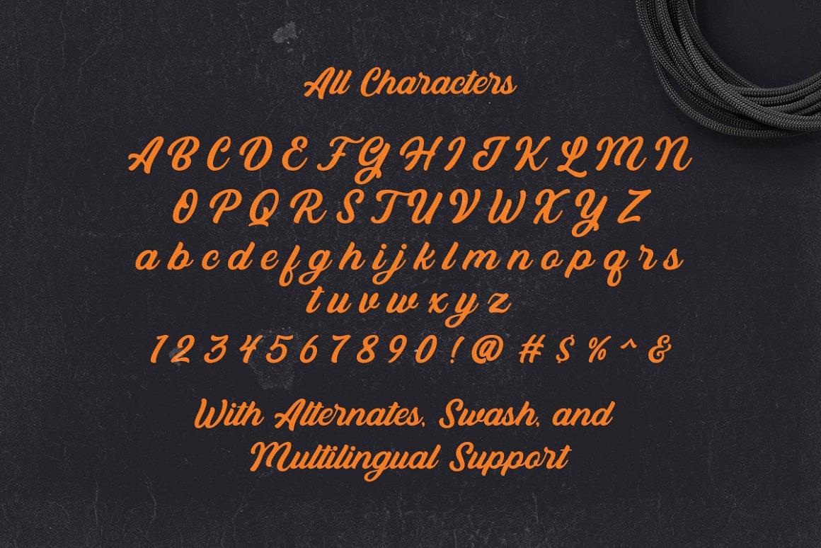 Bandira Script Typeface-3