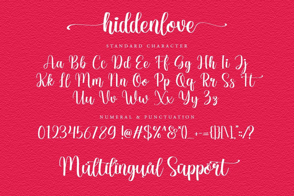 Hiddenlove Calligraphy Script Font-4