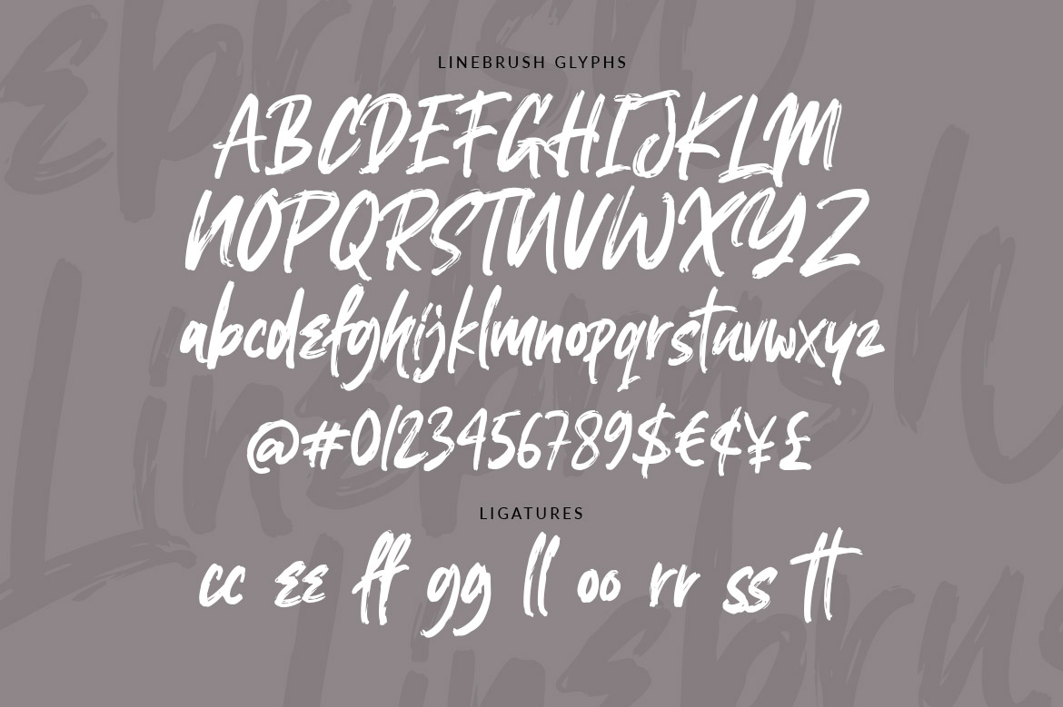 Linebrush Rough Brush Script Font-3