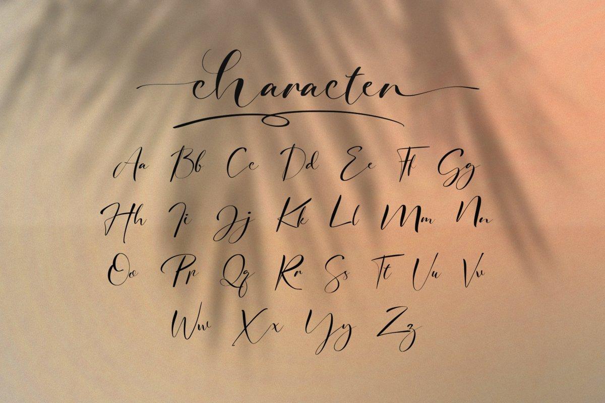 Signature Photopedia Handwritten Font-3
