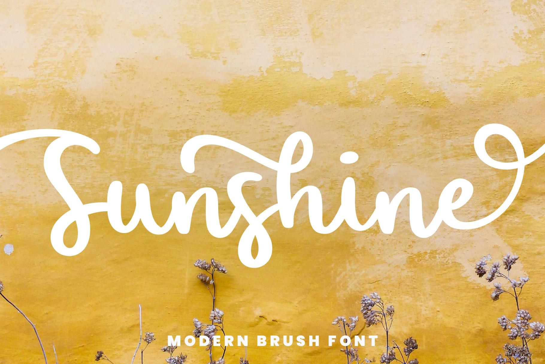 Sunshine Bold Script Font-1
