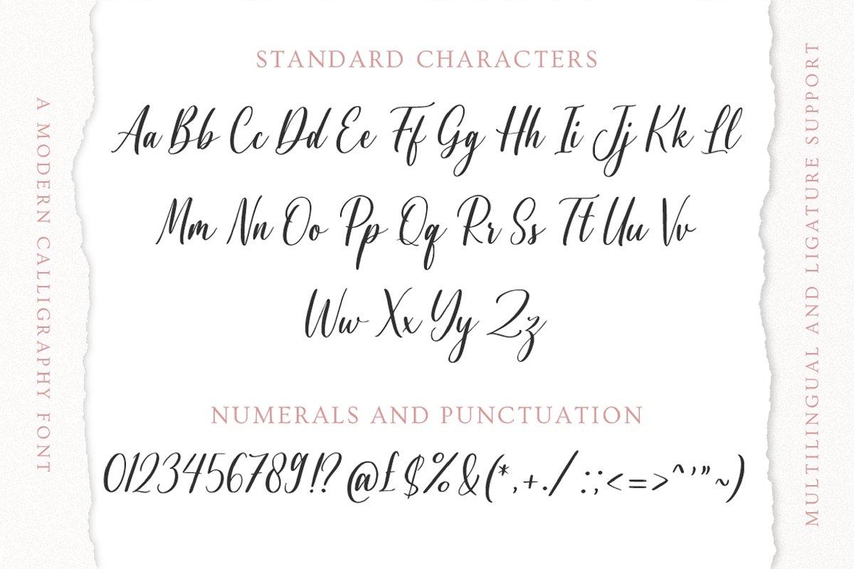 Agnetta Calligraphy Script Font-4