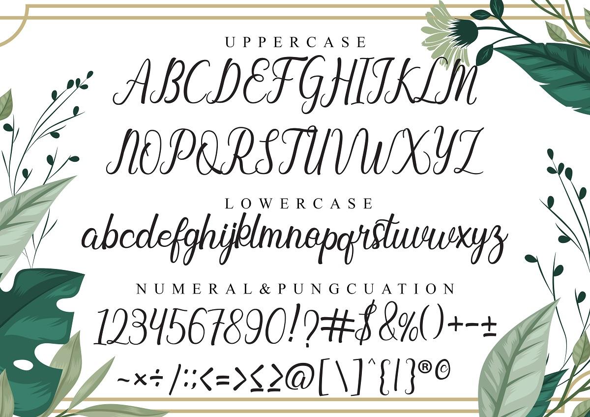 Baybe Evaline Modern Calligraphy Script Font-4