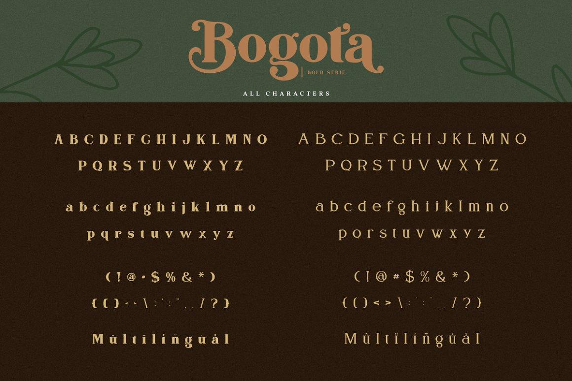 Bogota Bold Elegant Serif Font-3