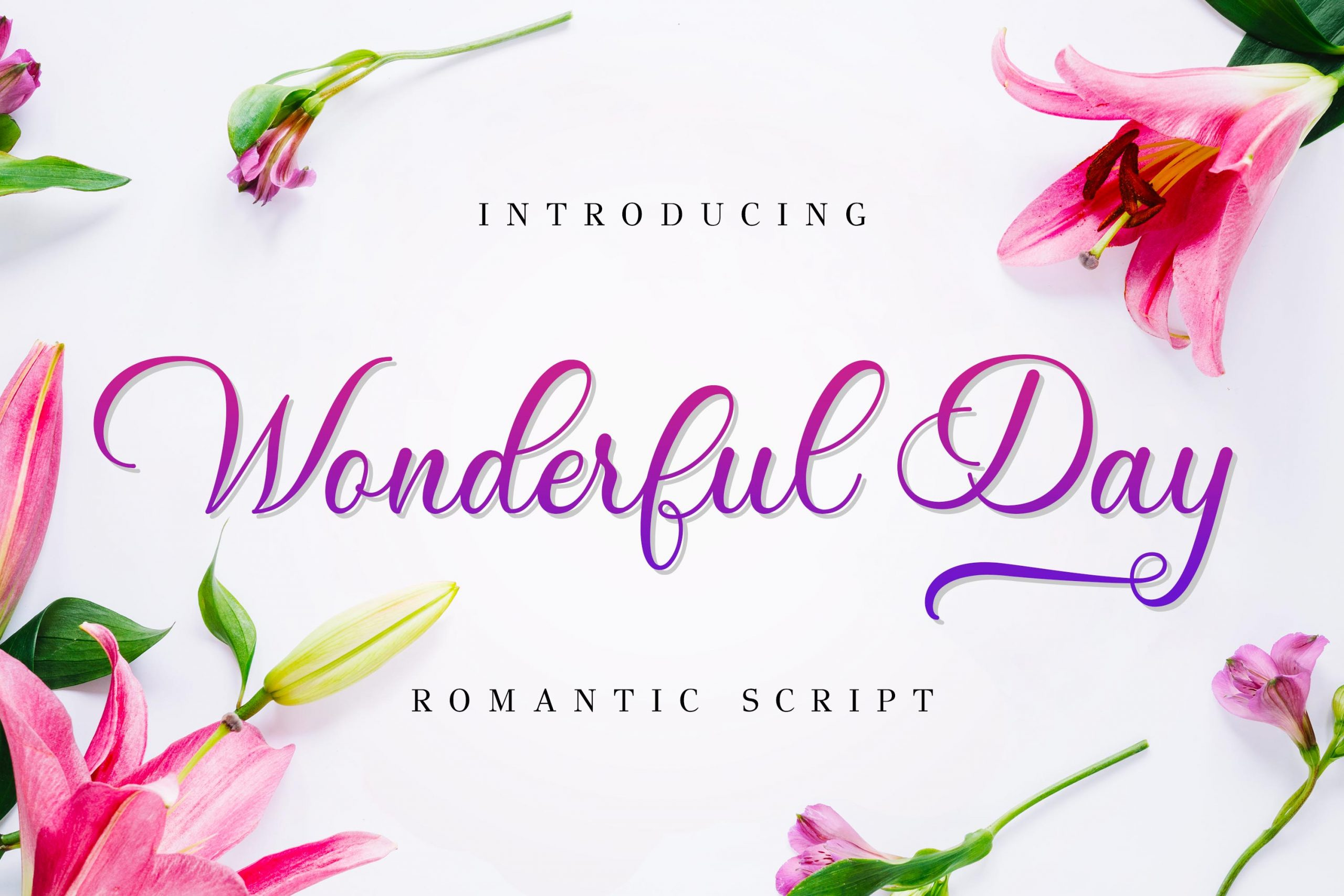 Wonderful Day Romantic Calligraphy Script Font