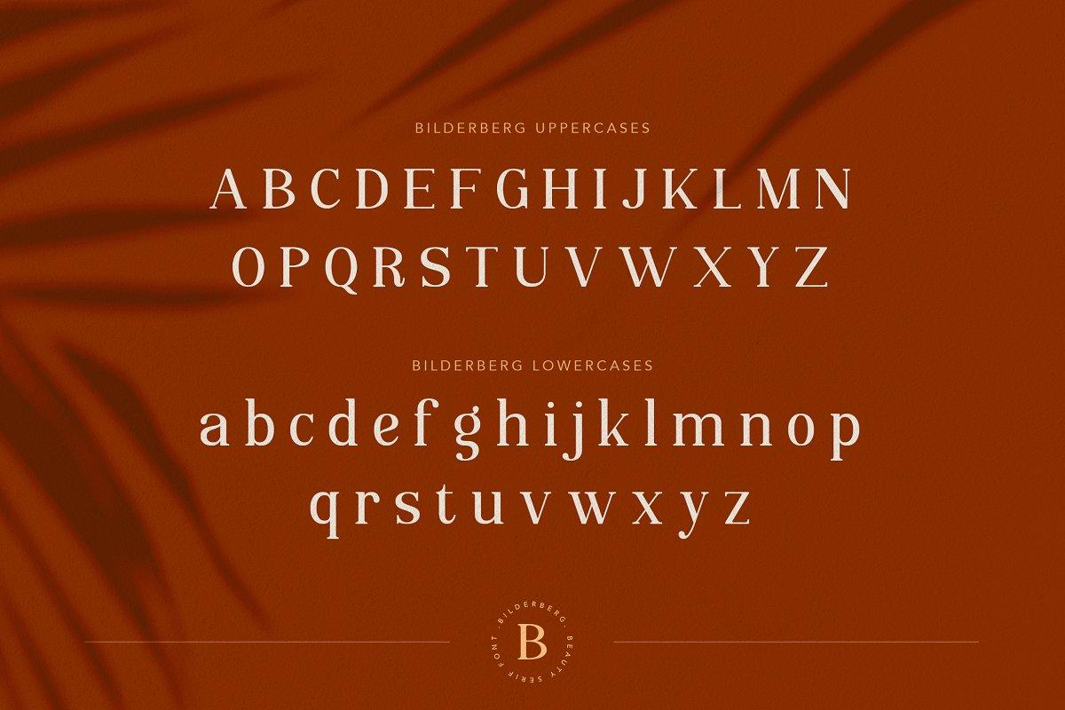 Bilderberg Beauty Serif Font-3