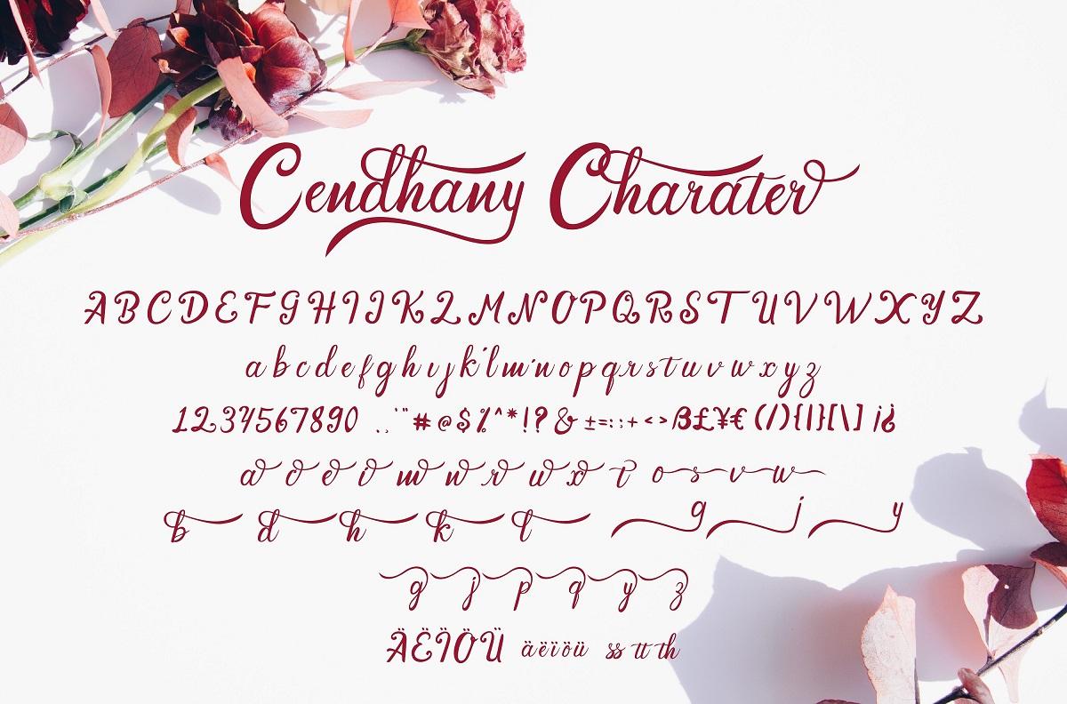 Cendhany Calligraphy Typeface-3