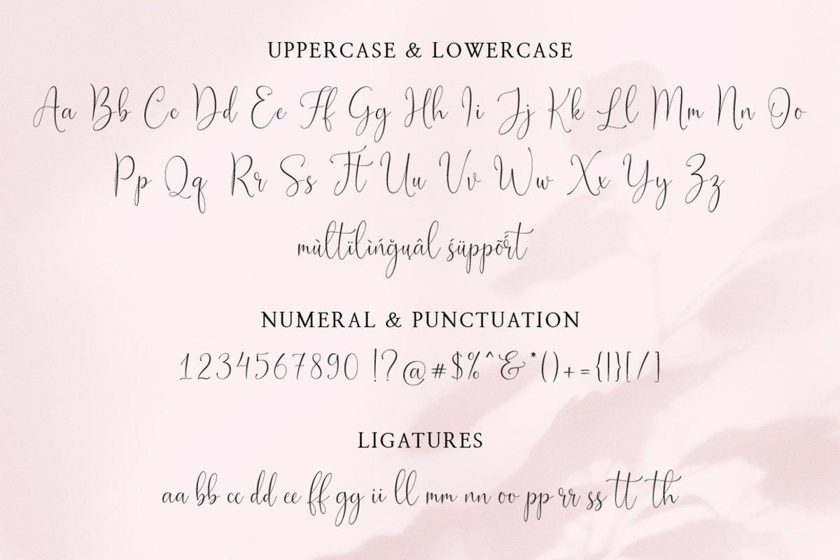 Joseph Olivia Calligraphy Script Font-3