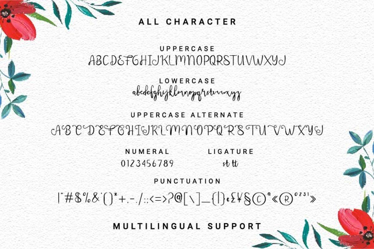 Meltinghones Calligraphy Script Font-3