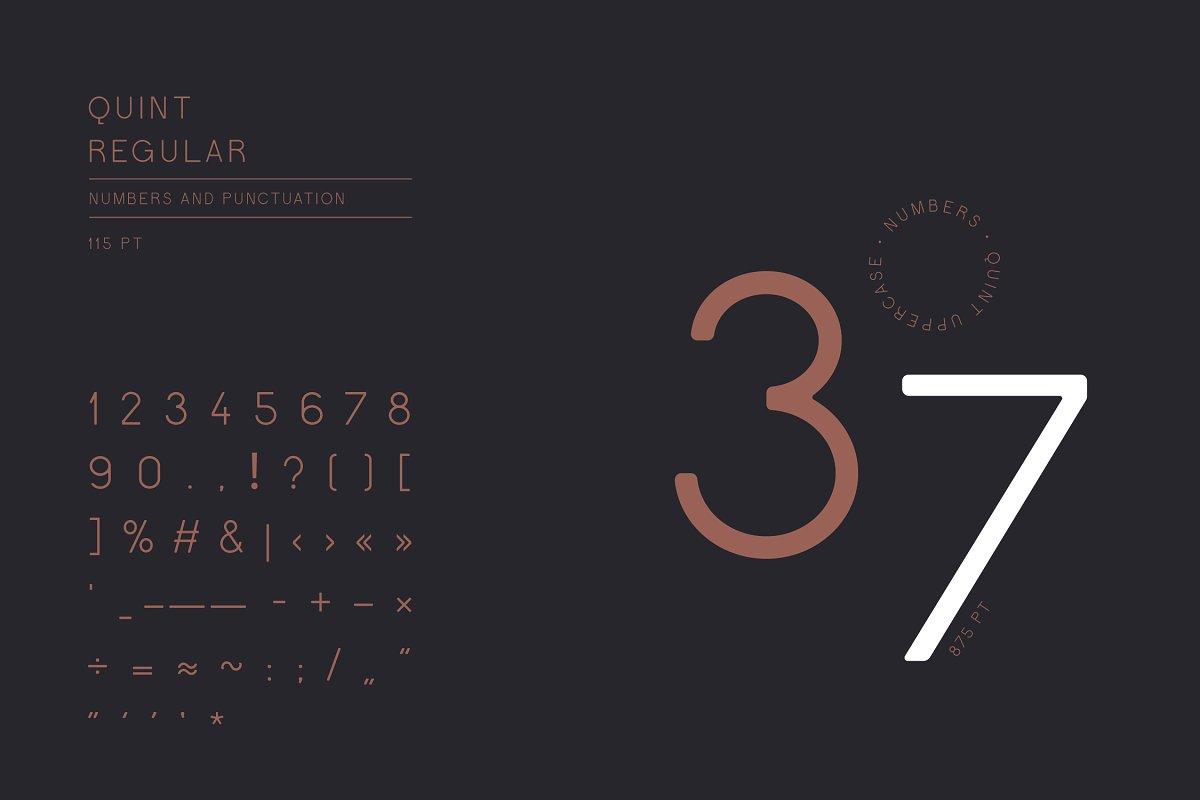 Quint Uppercase Sans Serif Font-3