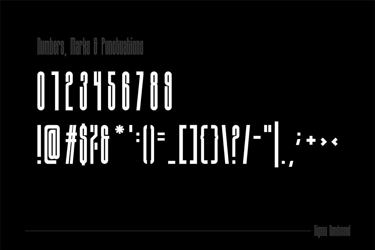 Sigana Display Sans Font-3