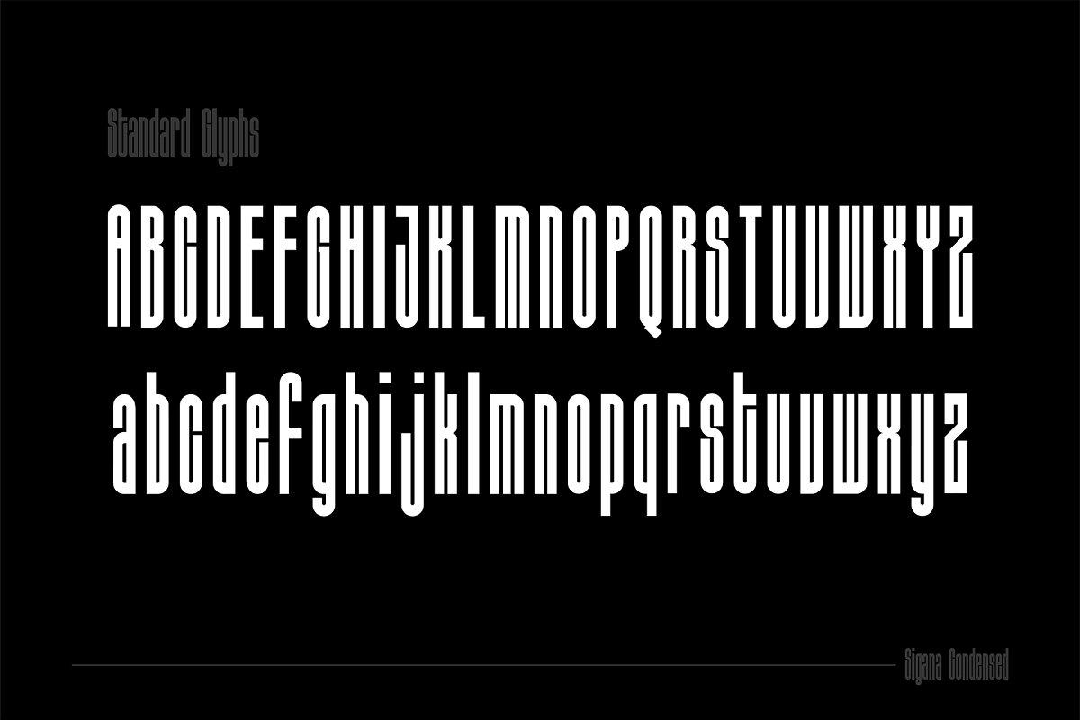 Sigana Display Sans Font-2