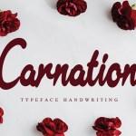 Carnation Typeface