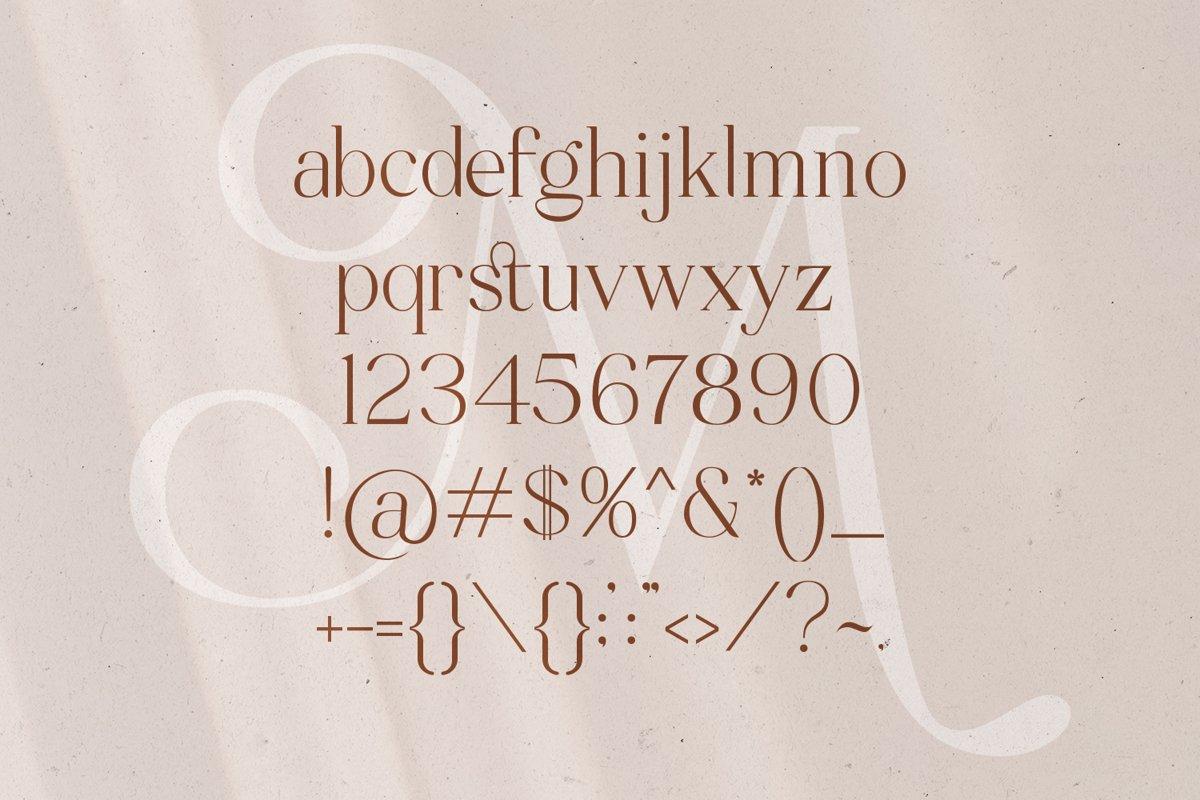 Mitchaella Unique Luxury Serif Typeface-3