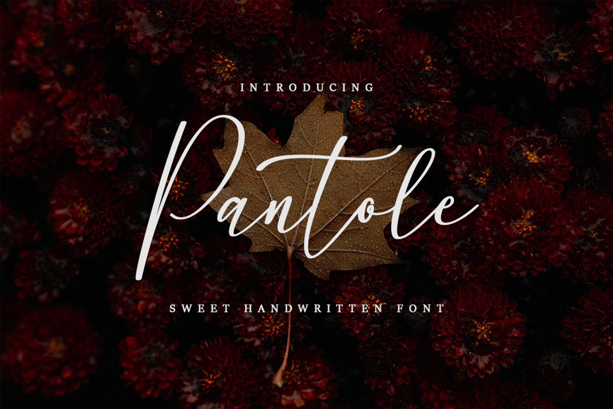 Pantole Sweet Handwritten Script Font