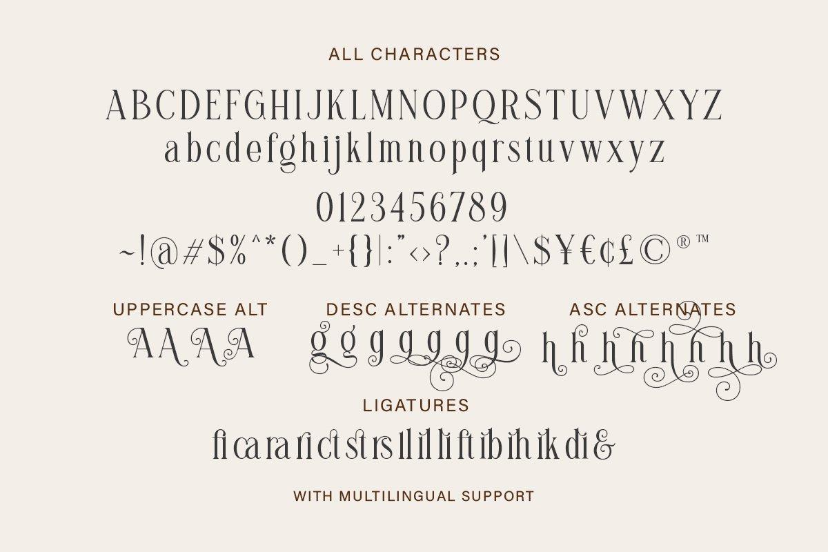 Brilliantly Font-3