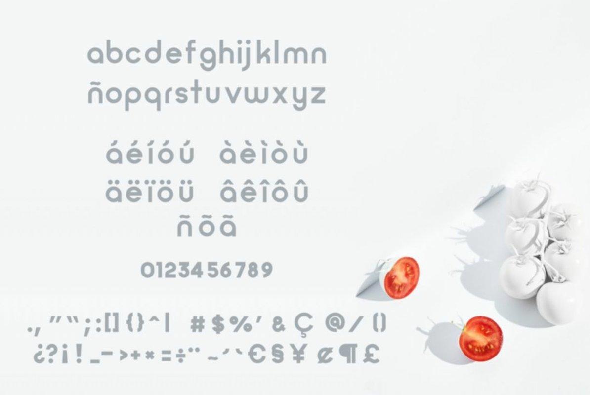 Zilap Minimalist Font-3