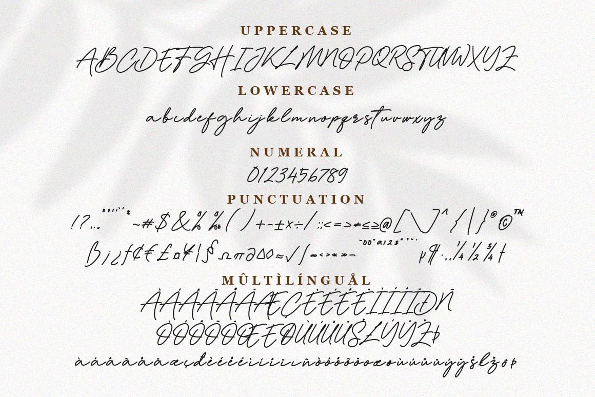 Dellynda Font-3