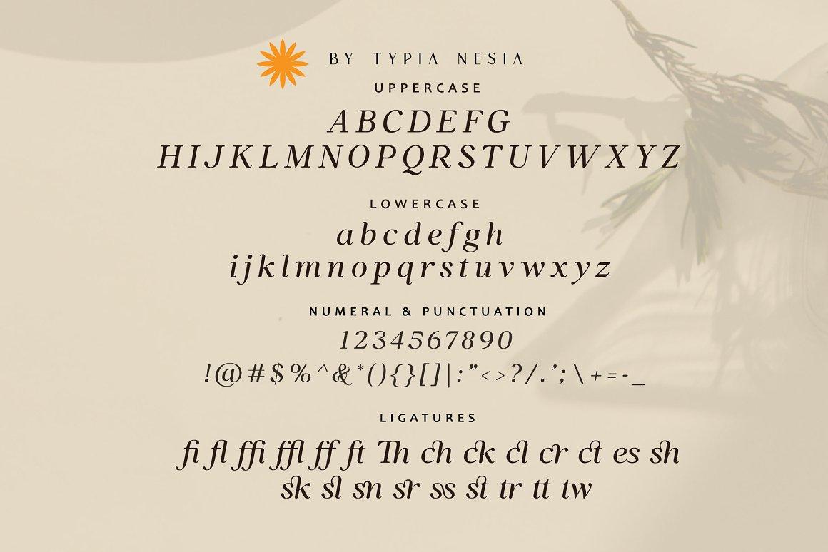 Bilsstwin Font-3
