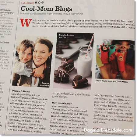 Dagmar Bleasdale featured in Westchester Magazine, best mom blogs