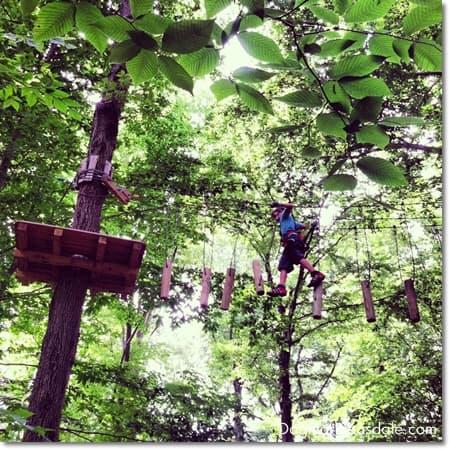 Adventure Park Connecticut