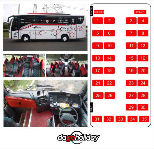 interior bus medium dago holiday